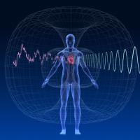 IL TOROIDE: COME LE EMOZIONI INFLUENZANO IL NOSTRO CAMPO ENERGETICO
